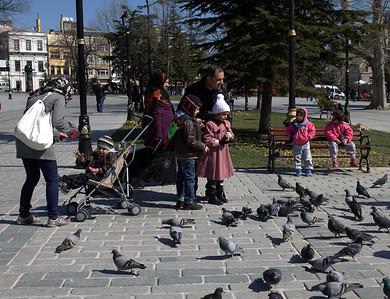 Children feeding the pigeons.