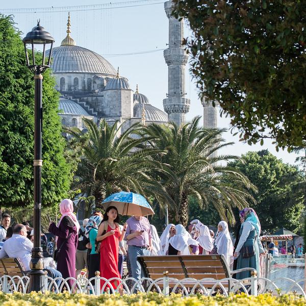 Mosque gardens