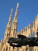 On top of Duomo di Milano - Sculpture of a duck or lizard in fg, spires in bg