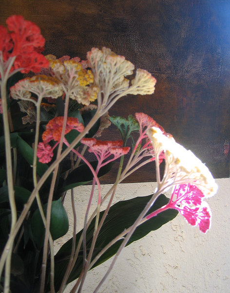 Closeup of flowers in dining area, Country House Montali