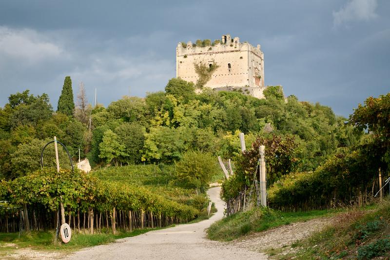 Italie 2019 Emilia Romana ,  Illasi too Modena
