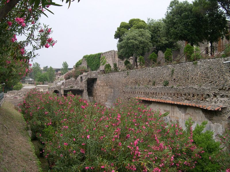After arriving in Rome, we traveled by private bus to Sorrento. Along the way, we stopped inPompeii, destroyed by the eruption of Vesuvius in 79 A.D.