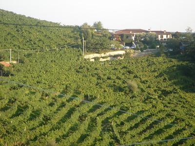 Italy-2005-06