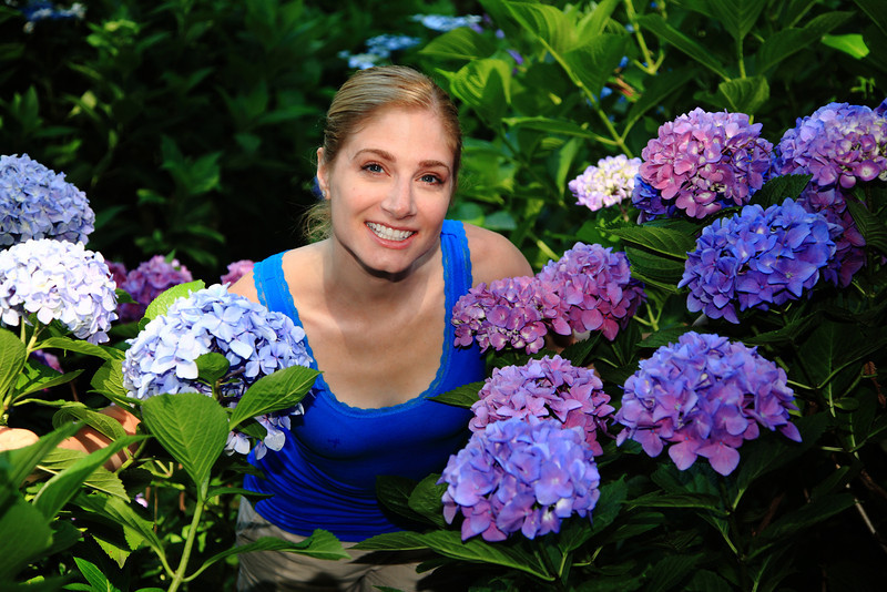 Hydrangeas as big as your head.