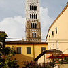 Tuscany - Lucca.  This is the Tower of the Duomo di Lucca.