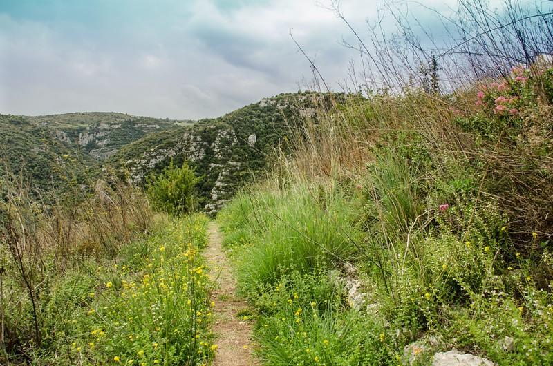 A Pretty Path