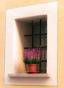 Venice window.