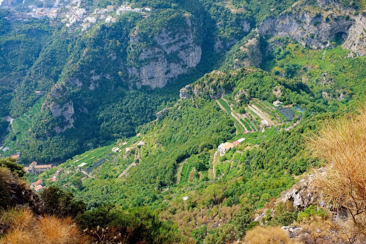Terraced farming below Scala and above Amalfi.