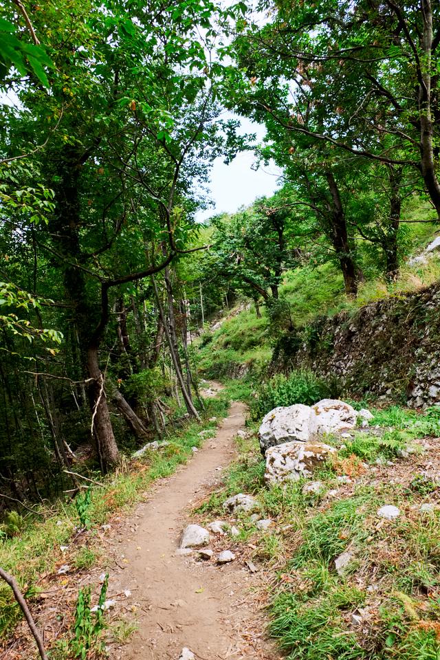 The trail ahead.