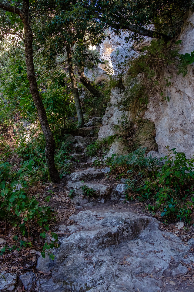 Ancient steps in the path.