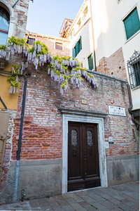 An old wall and door with encroaching wisteria over the top.