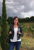 Vineyard near Montalcino
