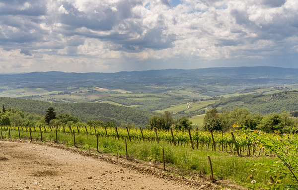 One of the views from the road into Casamonti