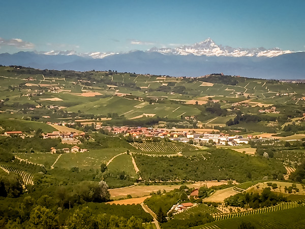 Langhe Region vineyards in Piedmont.  Mont Viso in the distance is visible from almost everywhere