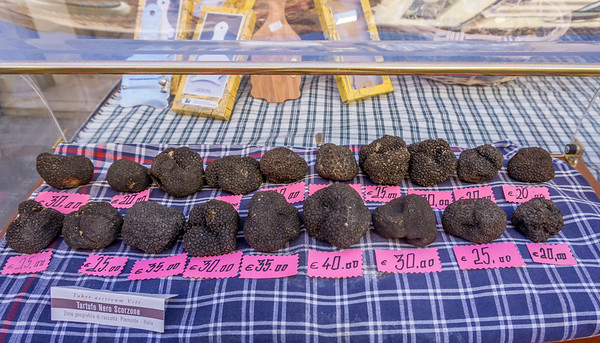 Alba is famous for white truffles, but these are black truffles.  White will be available in mid-August.