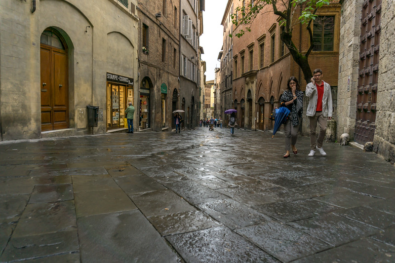 Siena's main street after a rain