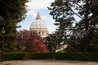 The dome from the Vatican Garden
