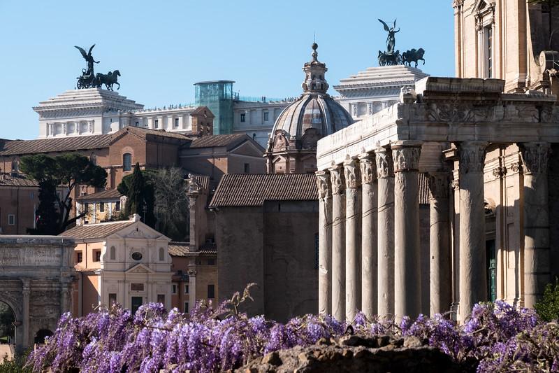 The Roman Forum sandwich