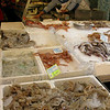 Fish market on the street
