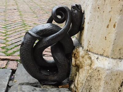 Campo serpente