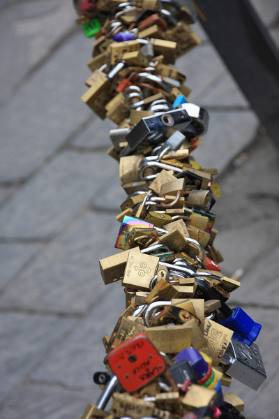 If you need a padlock, they have thousands.....