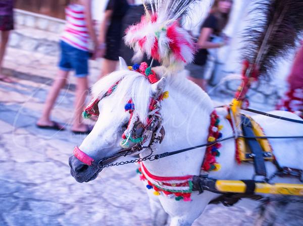 Traditional Sicilian Transportation