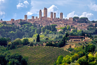 Vineyards below hilltop town of San Gimignano