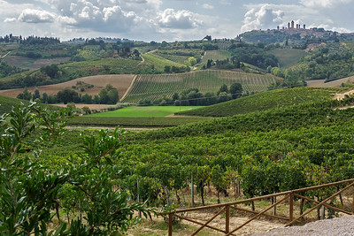 Vineyards below hill top town of San Gimignano