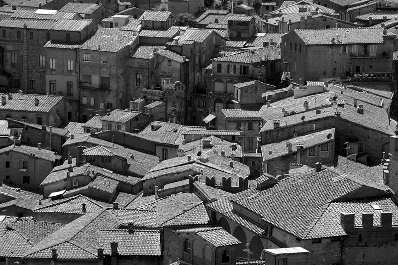 View of Siennese (?) rooftops from the top of Torre del Mangia, Siena (2)