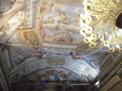 2009-01-24 129 Bologna