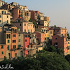 Late afternoon view of the houses of Corniglia