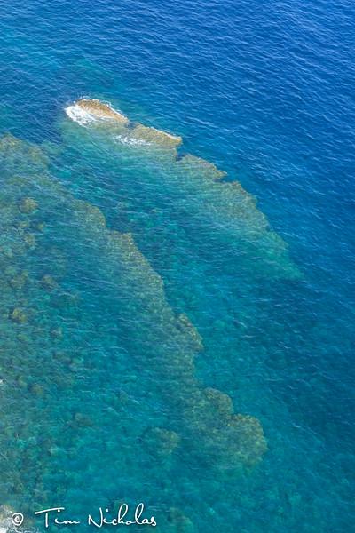 Beautiful reef below Corniglia
