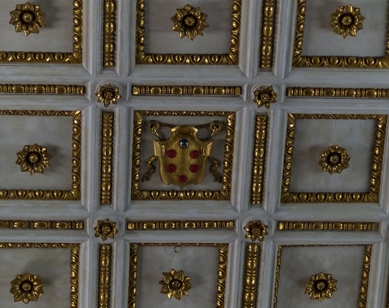 emblems and medallion in the vault
