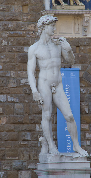 A copy of the famous statue of David.  The real statue is not allowed to be photographed.