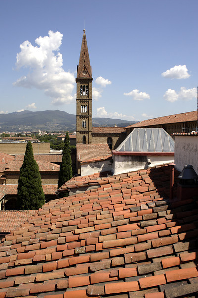 Florence rooftops and Church spire of Santa Maria Novella