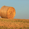 Solitary hay bale - outside Volterra