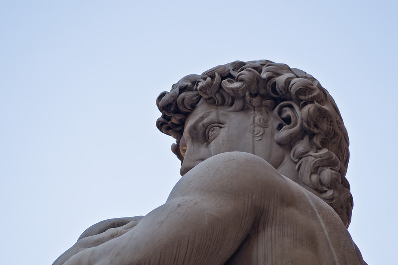 Title: Eyes of Defiance<br /> Date: October 2011<br /> The copy of the statue of David, which is in the Piazza della Signoria in Florence.
