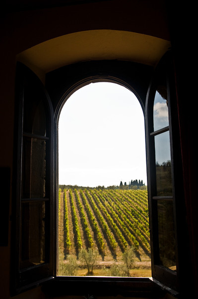 Title: Window Onto the Fields<br /> Date: October 2011<br /> Castello il Palagio Winery, Tuscany