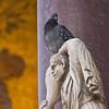 Title: Extra Burden<br /> Date: October 2011<br /> Venice
