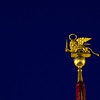 Title: Golden Lion<br /> Date: October 2011<br /> Venice