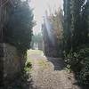 The Lane near Casa del Nottolo