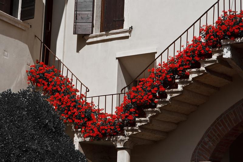 Italy 2009 Flora-8547