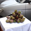Display of artichokes outside a restaurant and in between the parked cars.