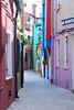 Venice 2010 505-1