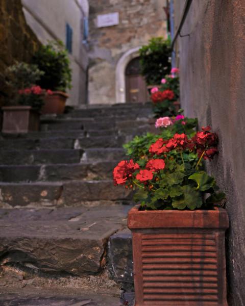 Tuscany Montalcino 18