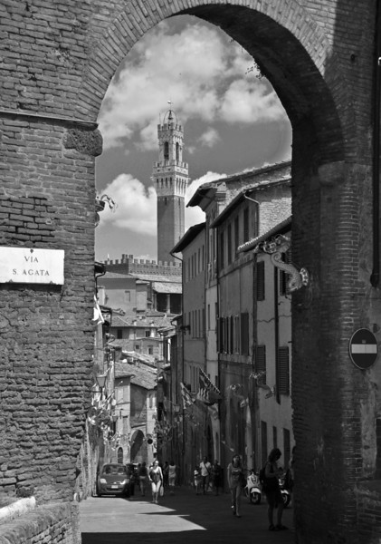 Tuscany Siena 1