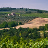 Tuscany Countryside 15