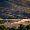 Tuscany Countryside 05