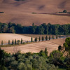 Tuscany Countryside 06