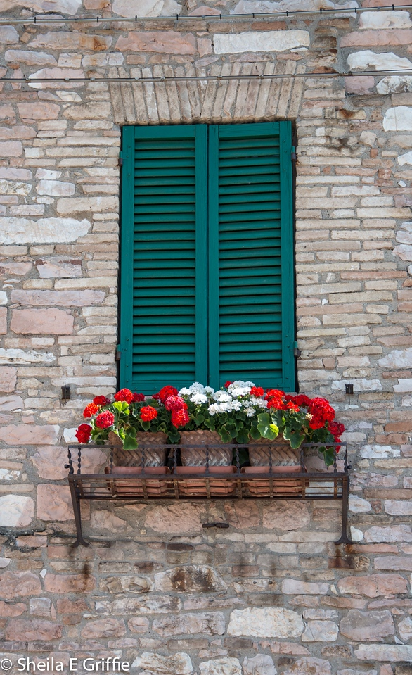 2012 Assisi, Italy